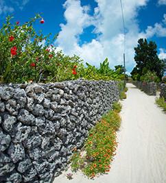 石垣島の石垣