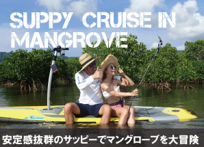 安定感抜群のサッピーでマングローブを大冒険
