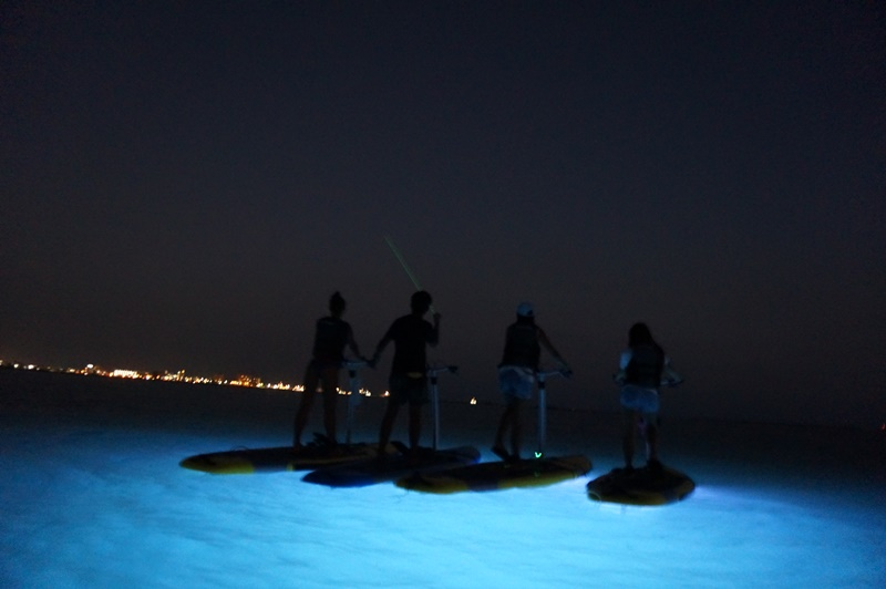 サンセット・ライトアップコース写真07